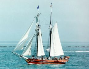 Swift of Ipswich