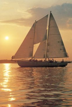 Schooner Woodwind I
