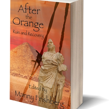 After the Orange cover
