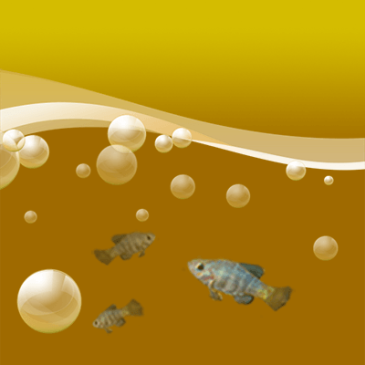 pupfish graphic